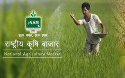 National Agriculture Market (eNAM)